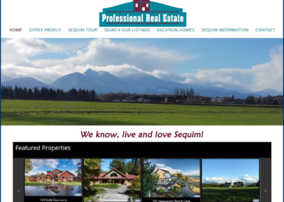 Professional Real Estate Co.